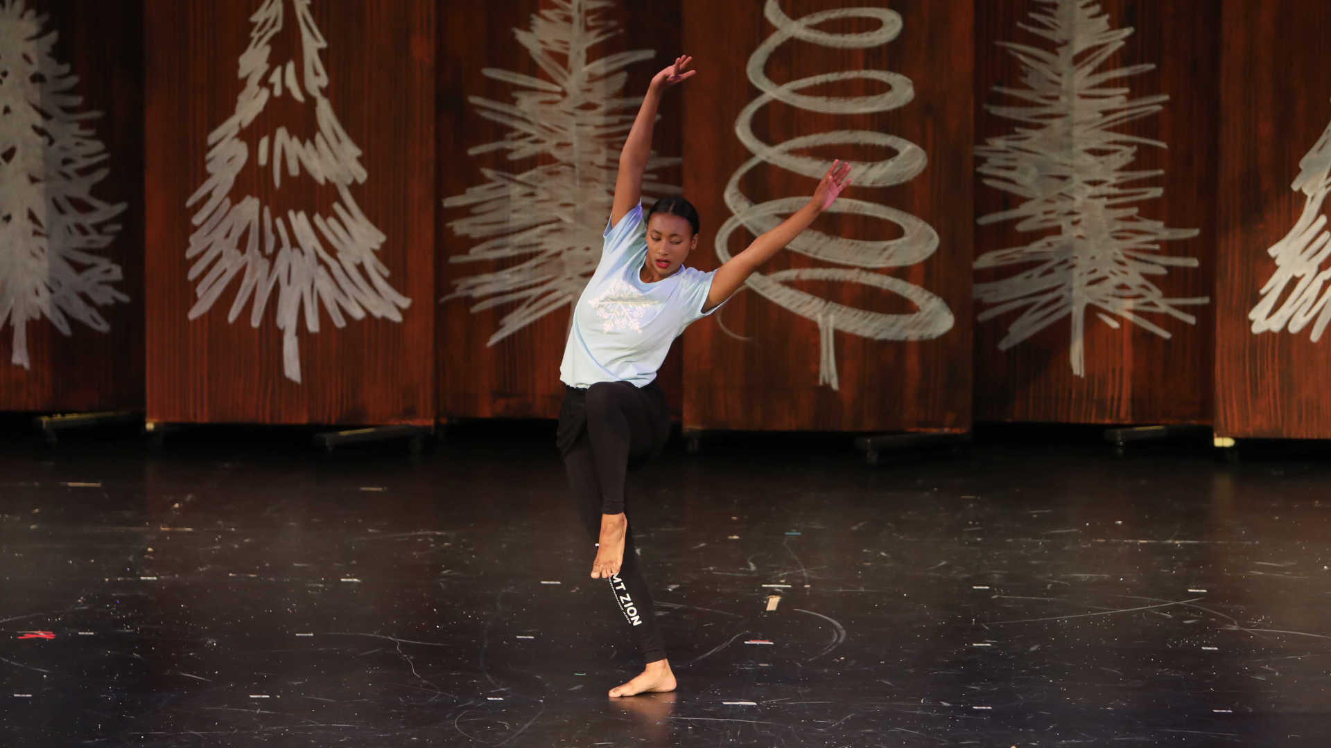 Company Dance Acceptance & Commitment